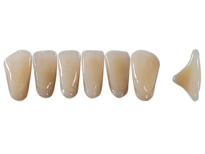 Anterior Synthetic Teeth